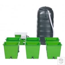 Green Man System 6 Pot System Green Man System