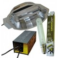 250W DayLite FOCUS System With Lamp Powerplant