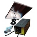 600W DayLite SuperWing System Without Lamp Powerplant
