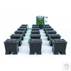 ALIEN RAIN 18 Pot 30L Black Series