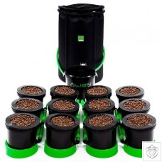 12 Pot Flood and Drain System