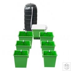 Green Man System 6 Pot RTW System Green Man System