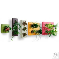 Flowerbox Classic FlowerBox