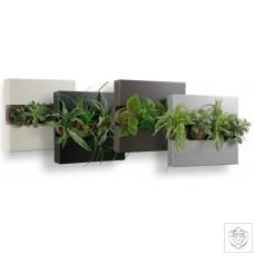 Flowerbox Metalic FlowerBox