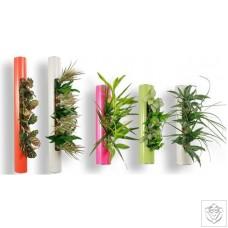 Flowerbox Tube FlowerBox