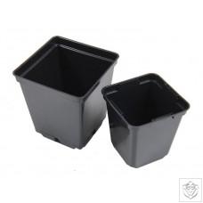 Small Square Pots 9cm & 11cm