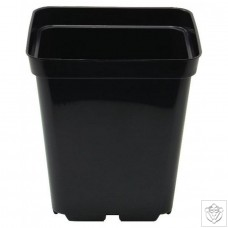 Square Pot 10cm (11cm depth) (0.7L) N/A