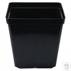 Square Pot 13cm (13cm depth) (1.5L) N/A