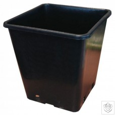 Square Pot 25cm (26cm depth) (11L) HydroGarden