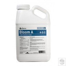 Blended Line - Bloom A