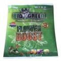 Flower Boost 1 Sachet BioGreen