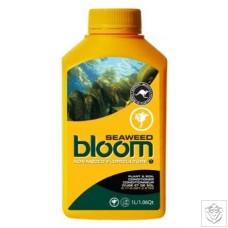 Seaweed Bloom Advanced Floriculture