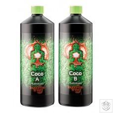Coco (A + B Complete Set)  Budhhas Tree
