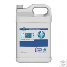 UC Roots Current Culture H2O