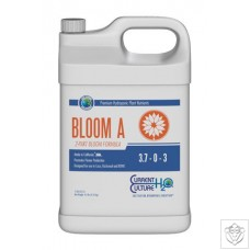 Bloom A Current Culture H2O