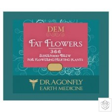 Fat Flowers Dragonfly Earth Medicine