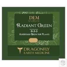 Radiant Green Dragonfly Earth Medicine