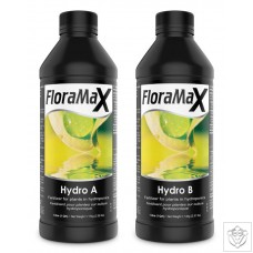 FloraMax Hydro A&B