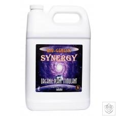 Synergy Genesis Formula