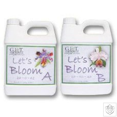 Let's Bloom A&B