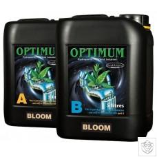 Optimum Bloom A&B