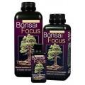Bonsai Focus Growth Technology