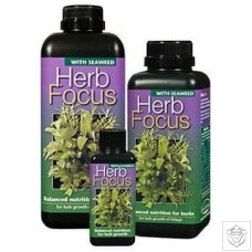 Herb Focus Growth Technology