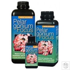 Pelargonium Focus Growth Technology