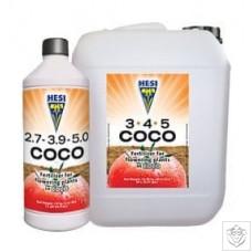 Coco Complex Hesi