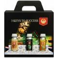3 Keys to Success House & Garden