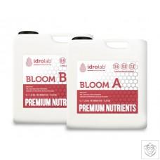Idrolab Premium Bloom A&B Idrolab