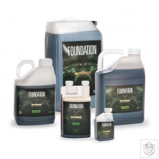 Intense Nutrients Foundation Root Stimulant Intense Nutrients