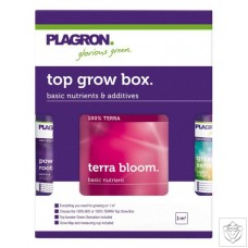 Top Grow Box - Terra Concept Plagron
