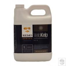 Velo Kelp