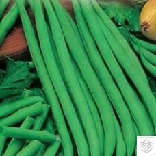 Bush Bean 1 packet (60 grams)