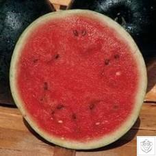 Melon 1 packet (12 seeds) N/A